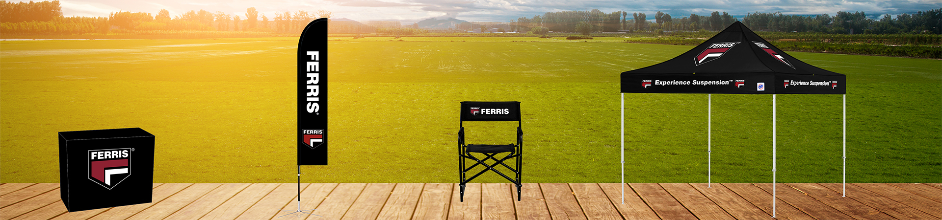 Ferris set